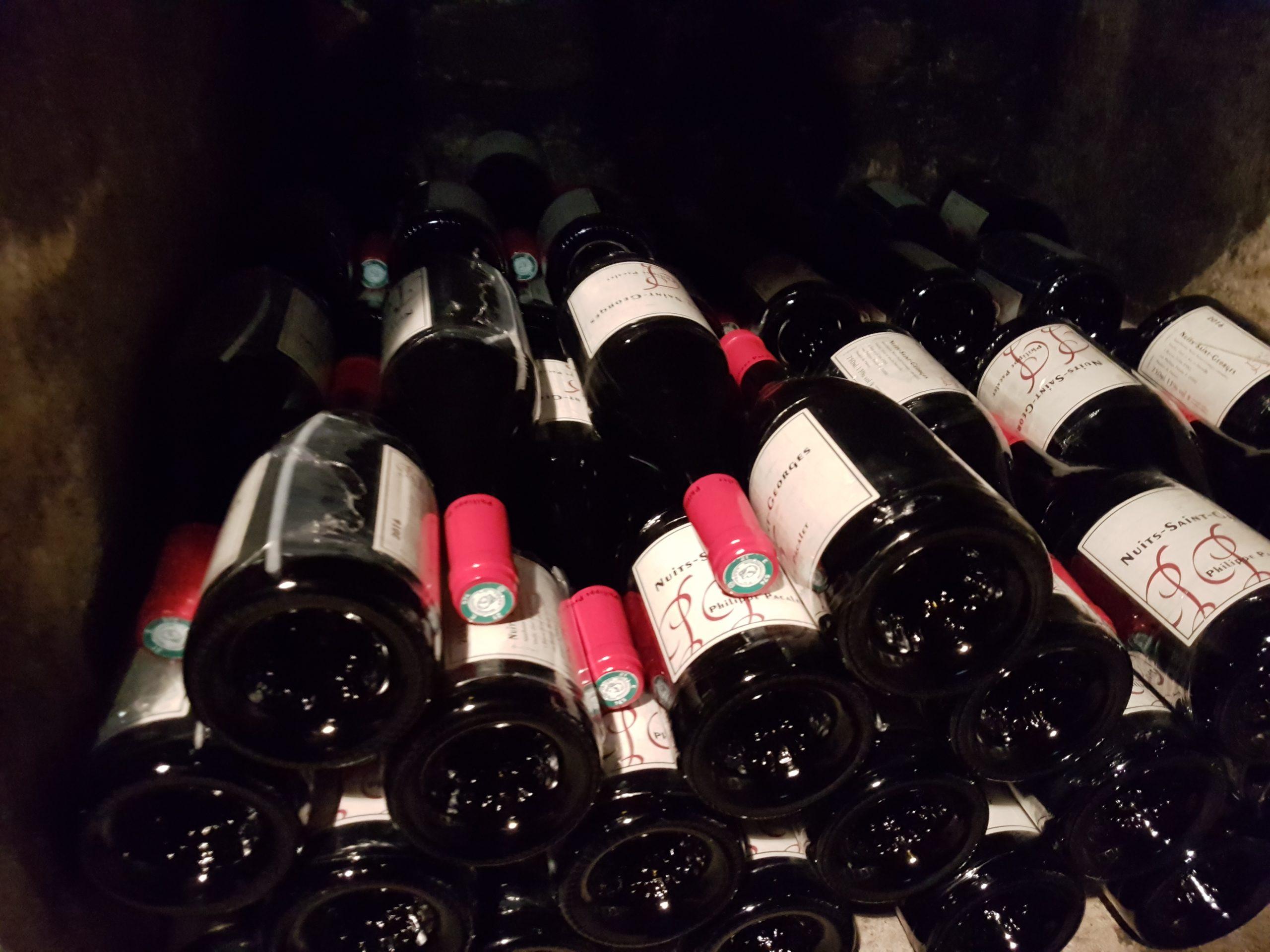 Vins du Domaine Philippe Pacalet, Bourgogne. Photo © Pierre d'Ornano