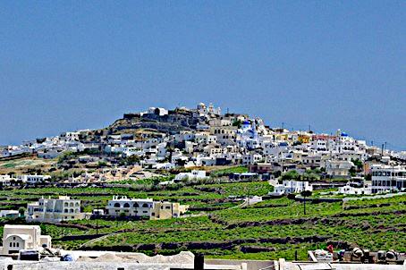 Les vignes, un peu à l'extérieur du village de Pyrgos Kallistis, occupent le point culminant de Santorin. Photo © DR